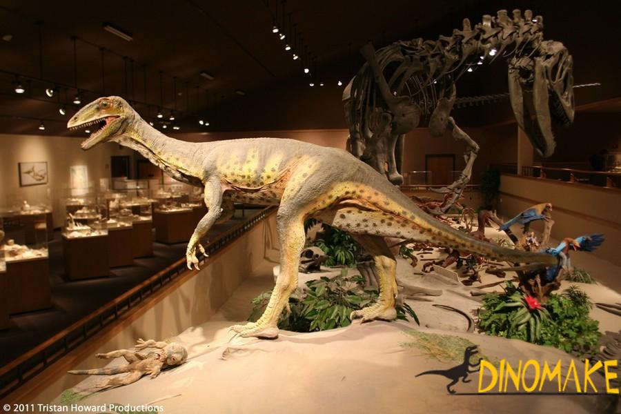 The animatronic dinosaurs company tells you what food dinosaur eat