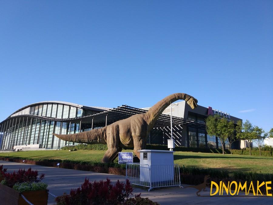 Importance of dinosaur fossil skeleton exhibition