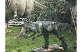 Custom Dinosaur Product Series