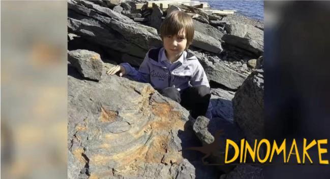 Dinosaur Fossil 1